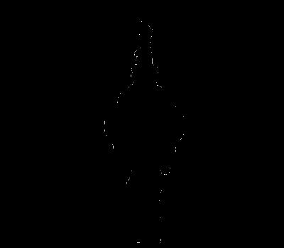 Havenrauschen / STS